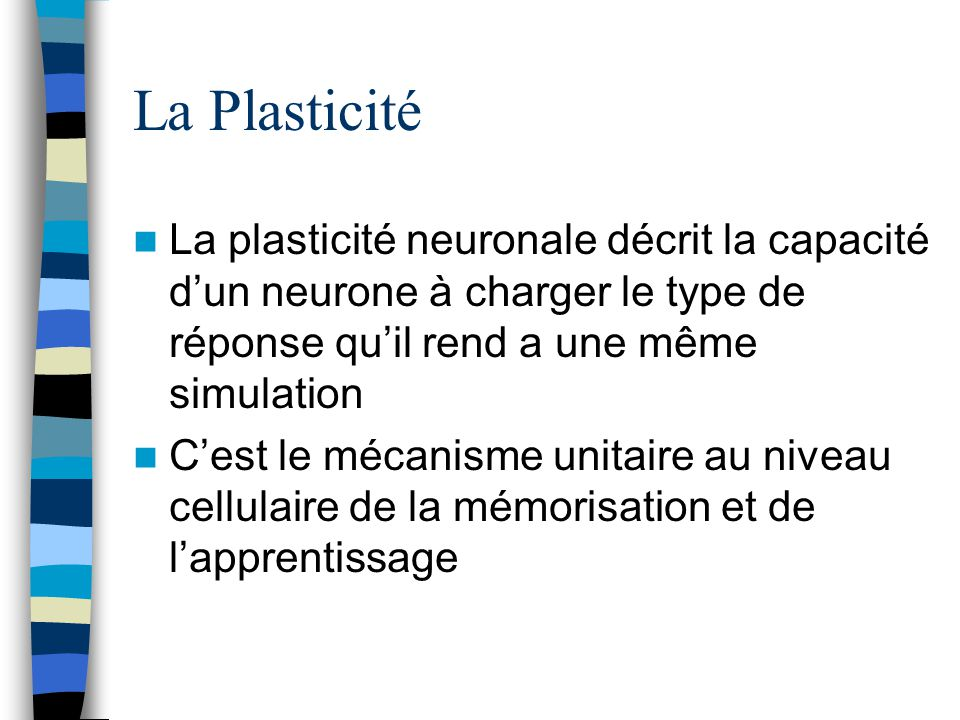 La Plasticité La plasticité neuronale décrit la capacité d'un neurone à charger le type de réponse qu'il rend a une même simulation.
