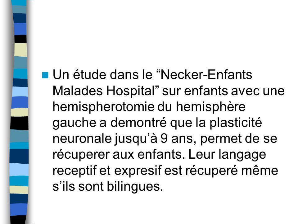 Un étude dans le Necker-Enfants Malades Hospital sur enfants avec une hemispherotomie du hemisphère gauche a demontré que la plasticité neuronale jusqu'à 9 ans, permet de se récuperer aux enfants.