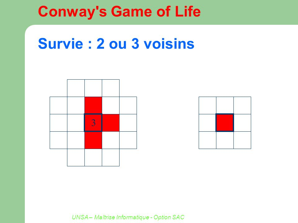 Conway s Game of Life Survie : 2 ou 3 voisins