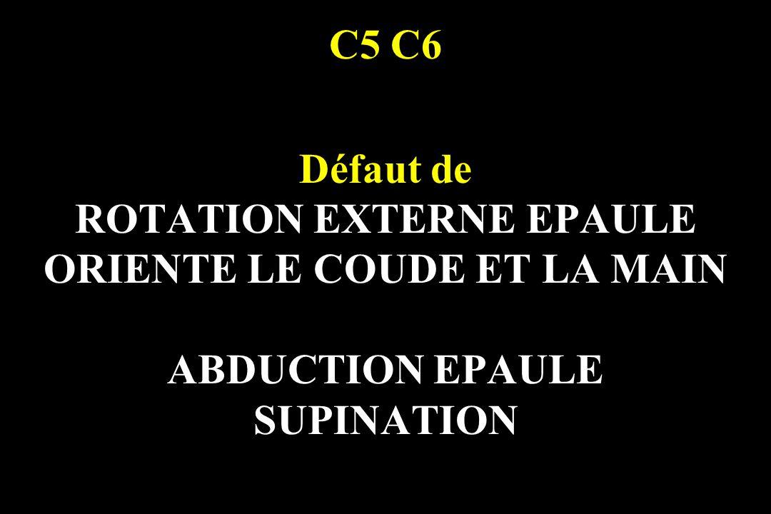 ROTATION EXTERNE EPAULE ORIENTE LE COUDE ET LA MAIN