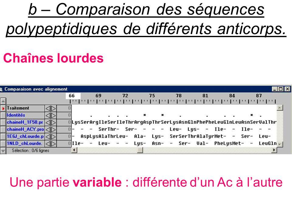 b – Comparaison des séquences polypeptidiques de différents anticorps.