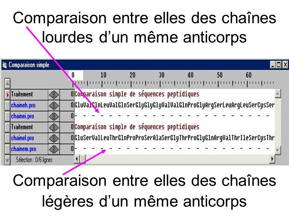 Comparaison entre elles des chaînes lourdes d'un même anticorps