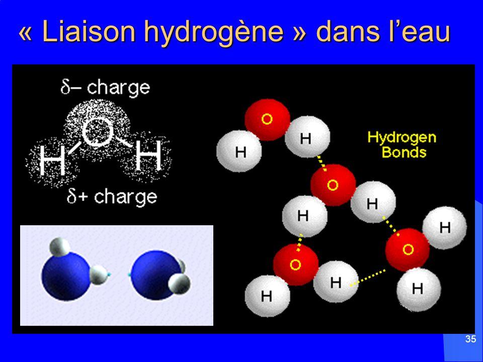 « Liaison hydrogène » dans l'eau