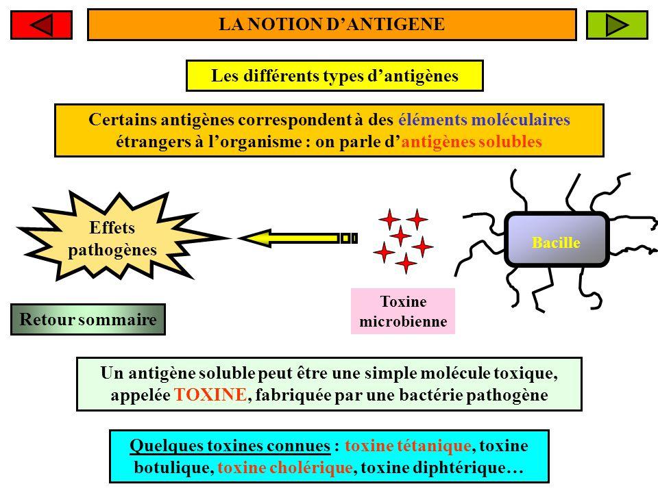 Les différents types d'antigènes