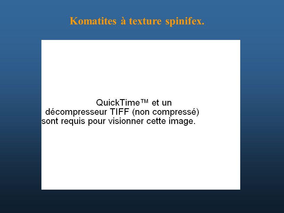 Komatites à texture spinifex.