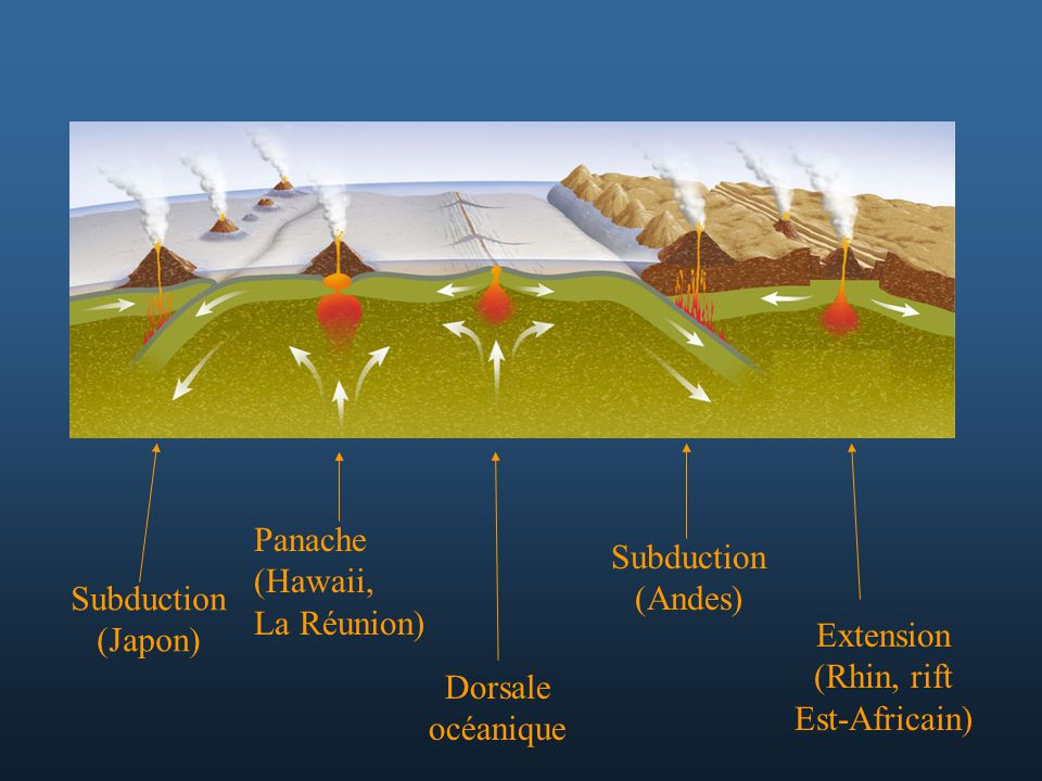 Panache (Hawaii, La Réunion) Subduction. (Andes) Subduction. (Japon) Extension. (Rhin, rift.