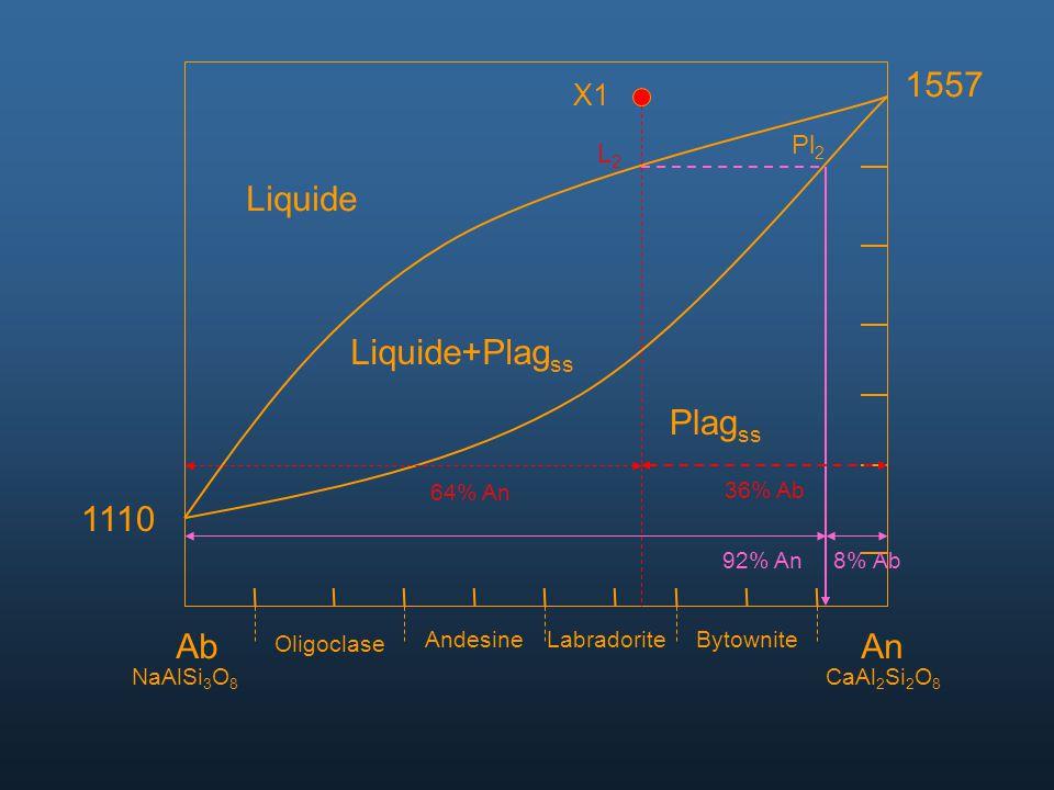 1557 Liquide Liquide+Plagss Plagss 1110 Ab An X1 Pl2 L2 64% An 36% Ab