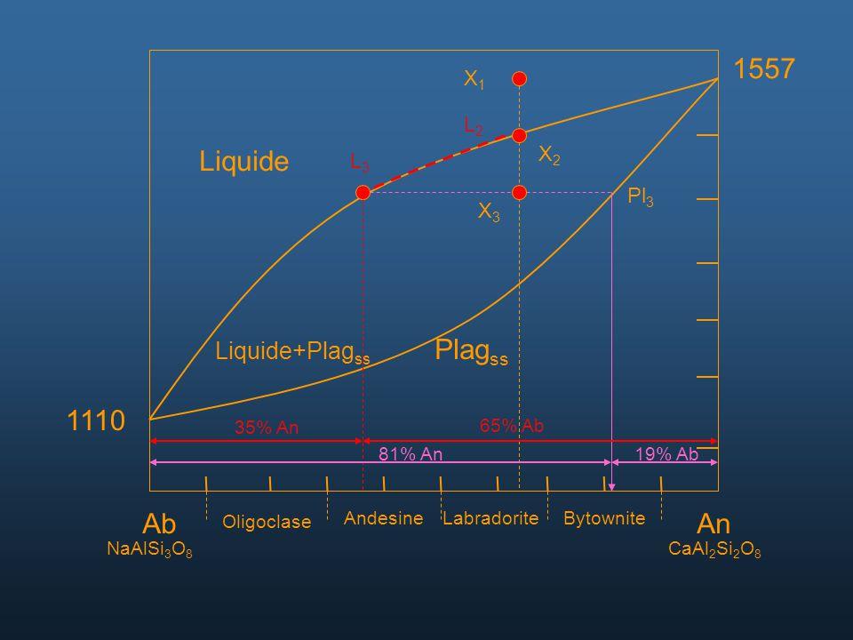 1557 Liquide Plagss 1110 Ab An Liquide+Plagss X1 L2 X2 L3 Pl3 X3