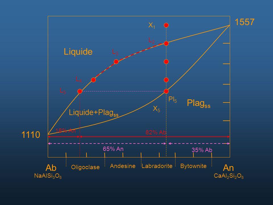 1557 Liquide Plagss 1110 Ab An Liquide+Plagss X1 L2 L3 L4 L5 Pl5 X5