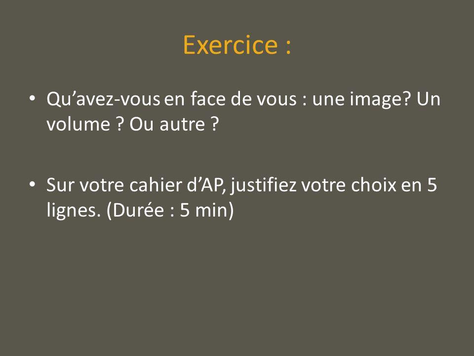 Exercice : Qu'avez-vous en face de vous : une image Un volume Ou autre