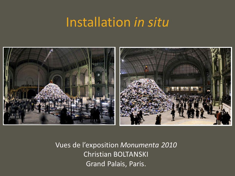 Vues de l'exposition Monumenta 2010