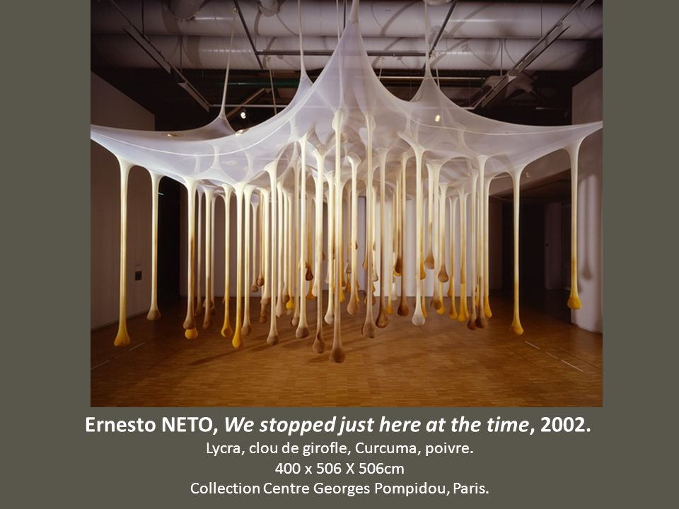 Ernesto NETO, We stopped just here at the time, 2002.