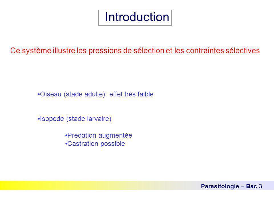 Introduction Ce système illustre les pressions de sélection et les contraintes sélectives. Oiseau (stade adulte): effet très faible.