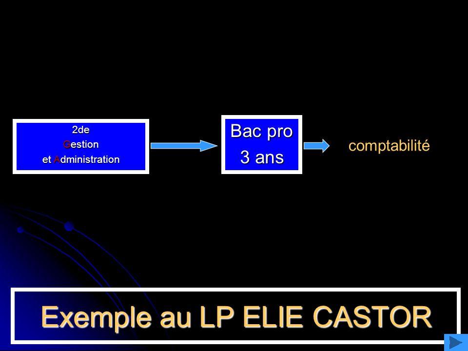 Exemple au LP ELIE CASTOR