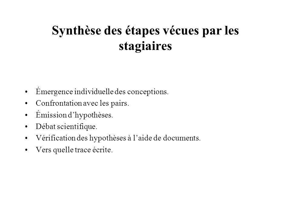 Synthèse des étapes vécues par les stagiaires