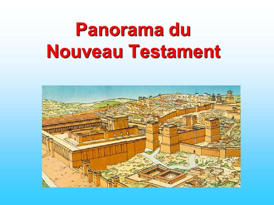 Panorama du Nouveau Testament
