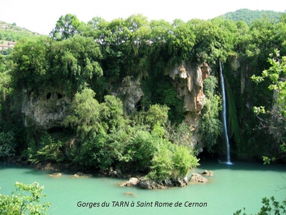 Gorges du TARN à Saint Rome de Cernon