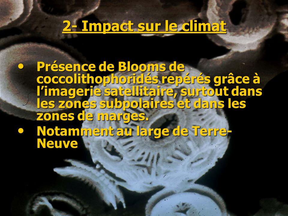 2- Impact sur le climat