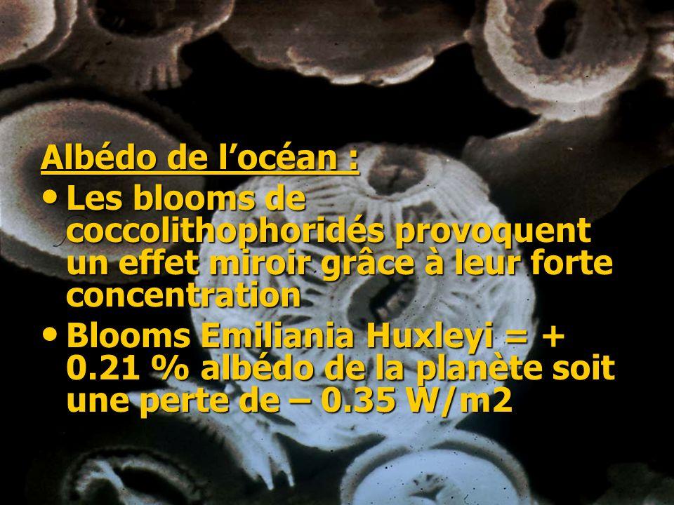 Albédo de l'océan :Les blooms de coccolithophoridés provoquent un effet miroir grâce à leur forte concentration.