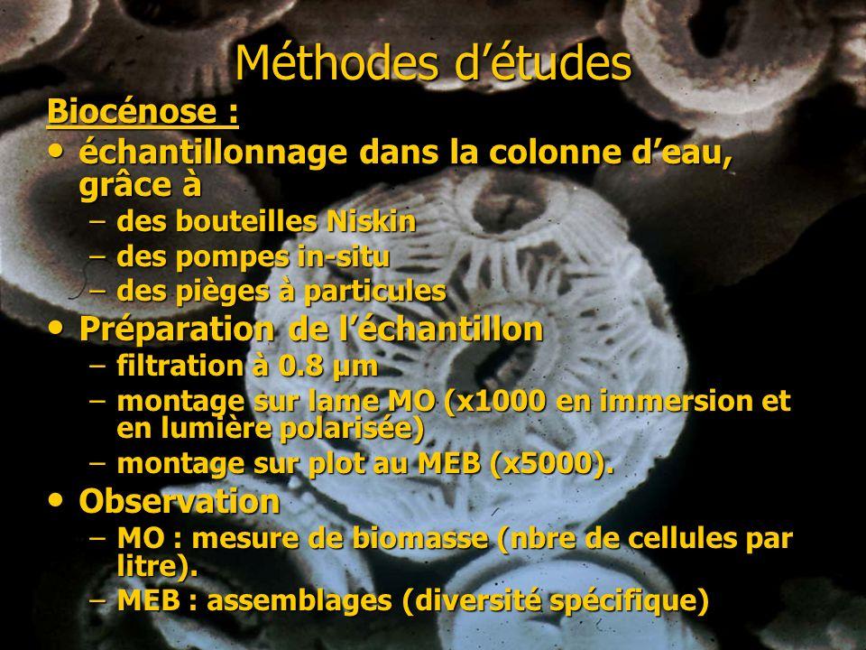 Méthodes d'études Biocénose :