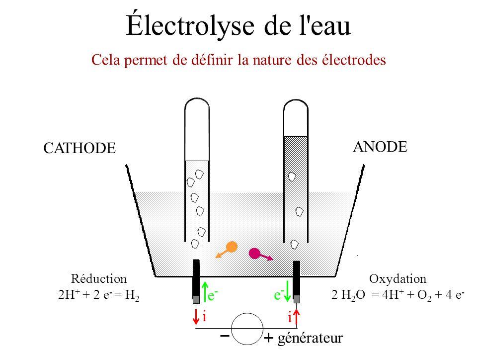 Cela permet de définir la nature des électrodes