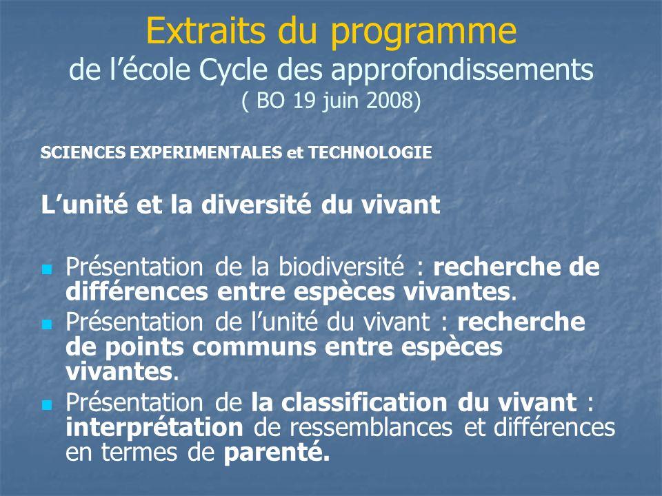 Extraits du programme de l'école Cycle des approfondissements ( BO 19 juin 2008)