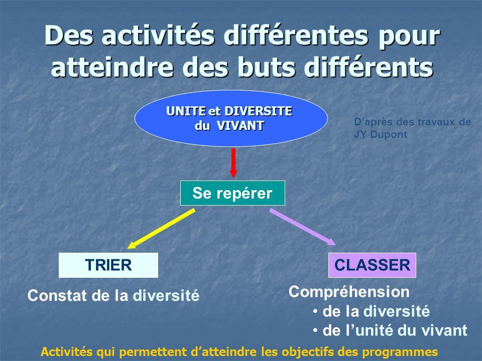 Des activités différentes pour atteindre des buts différents