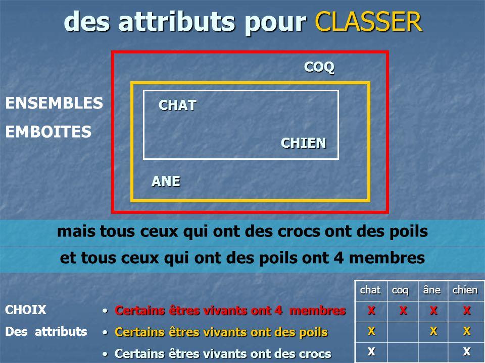 des attributs pour CLASSER