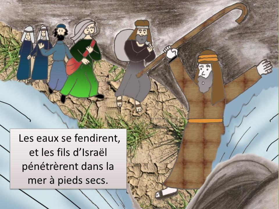 Les eaux se fendirent, et les fils d'Israël pénétrèrent dans la mer à pieds secs.