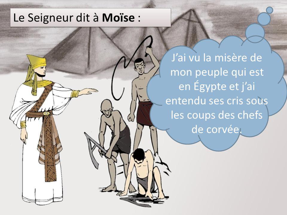 Le Seigneur dit à Moïse :