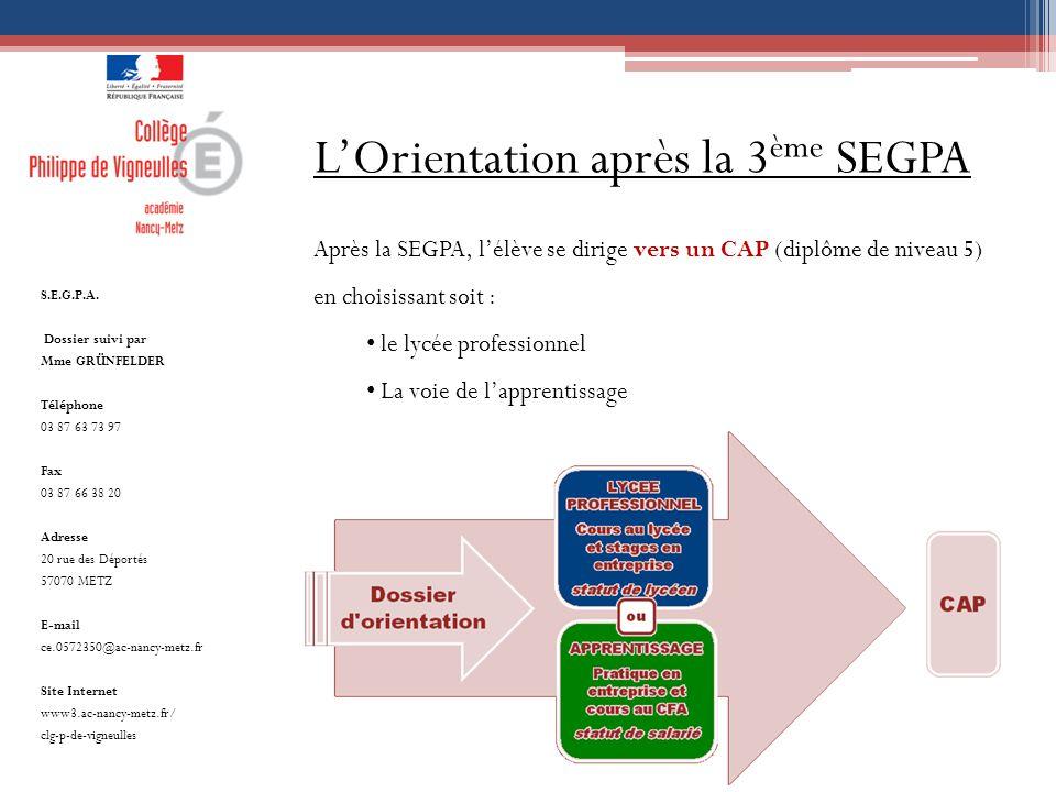 L'Orientation après la 3ème SEGPA