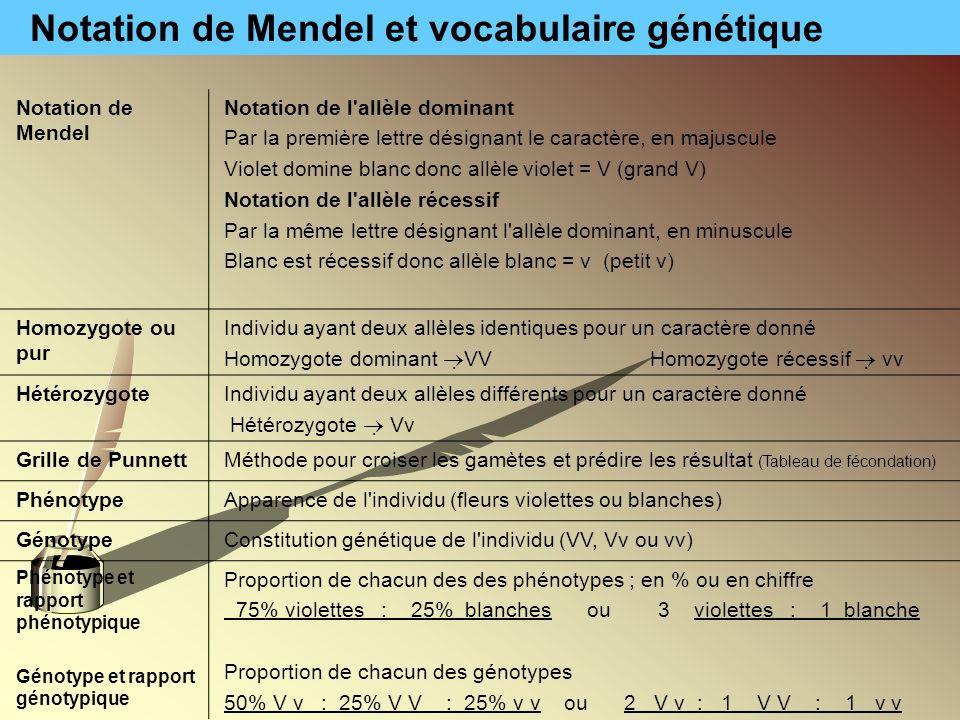 Notation de Mendel et vocabulaire génétique