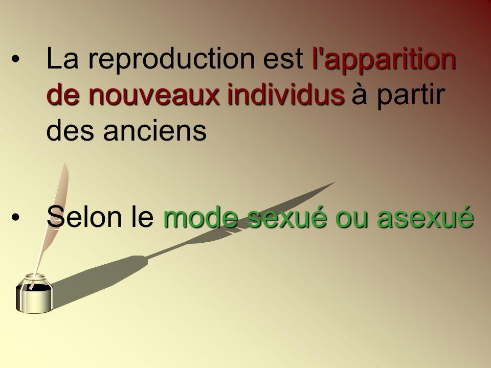 La reproduction est l apparition de nouveaux individus à partir des anciens