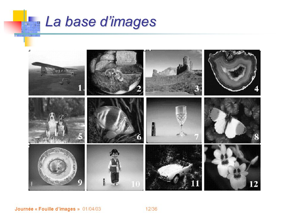 La base d'images Journée « Fouille d'images » 01/04/03