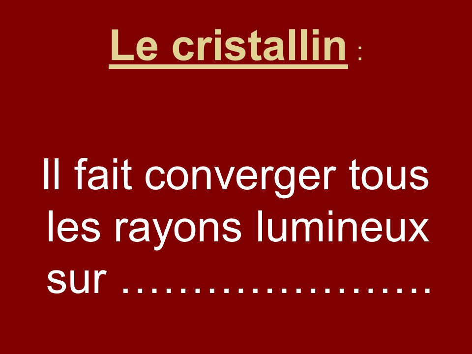 Le cristallin : Il fait converger tous les rayons lumineux sur ………………….