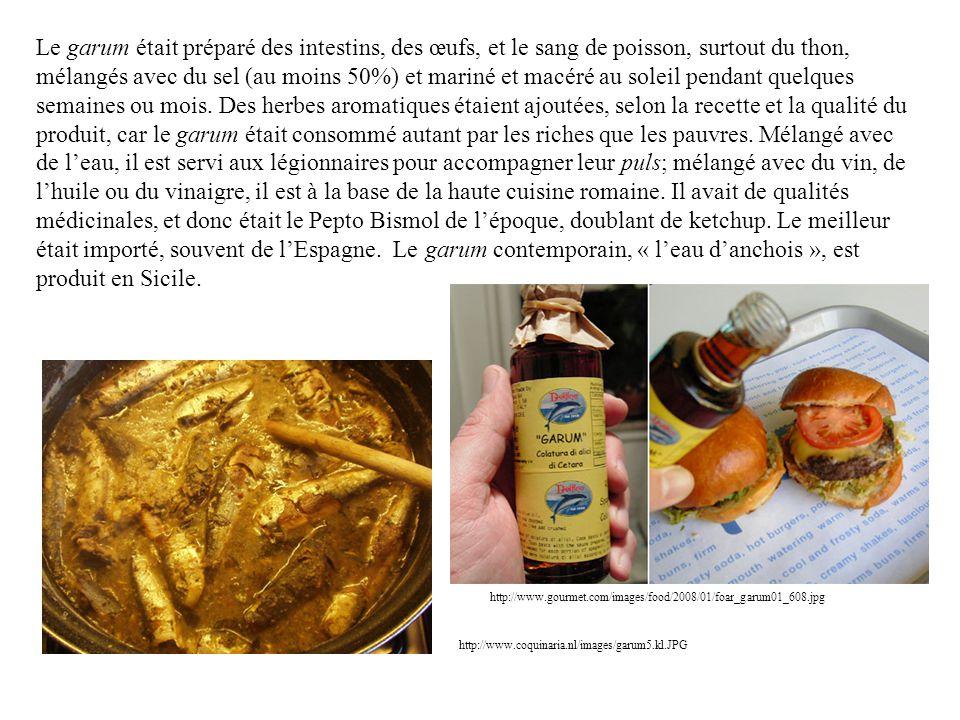 Le garum était préparé des intestins, des œufs, et le sang de poisson, surtout du thon, mélangés avec du sel (au moins 50%) et mariné et macéré au soleil pendant quelques semaines ou mois. Des herbes aromatiques étaient ajoutées, selon la recette et la qualité du produit, car le garum était consommé autant par les riches que les pauvres. Mélangé avec de l'eau, il est servi aux légionnaires pour accompagner leur puls; mélangé avec du vin, de l'huile ou du vinaigre, il est à la base de la haute cuisine romaine. Il avait de qualités médicinales, et donc était le Pepto Bismol de l'époque, doublant de ketchup. Le meilleur était importé, souvent de l'Espagne. Le garum contemporain, « l'eau d'anchois », est produit en Sicile.