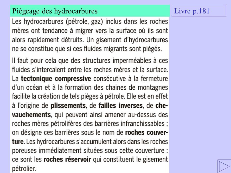 Piégeage des hydrocarbures