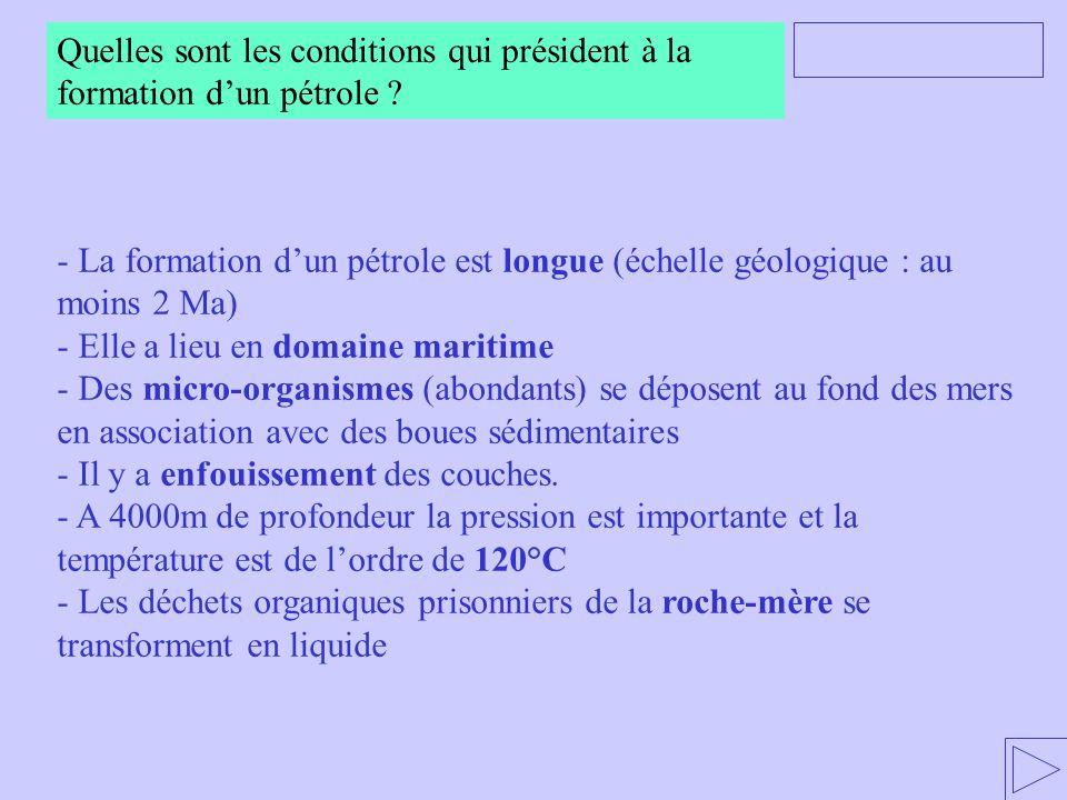 Quelles sont les conditions qui président à la formation d'un pétrole