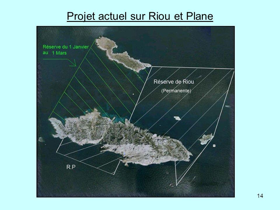 Projet actuel sur Riou et Plane