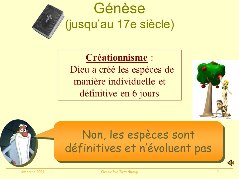 Génèse (jusqu'au 17e siècle)