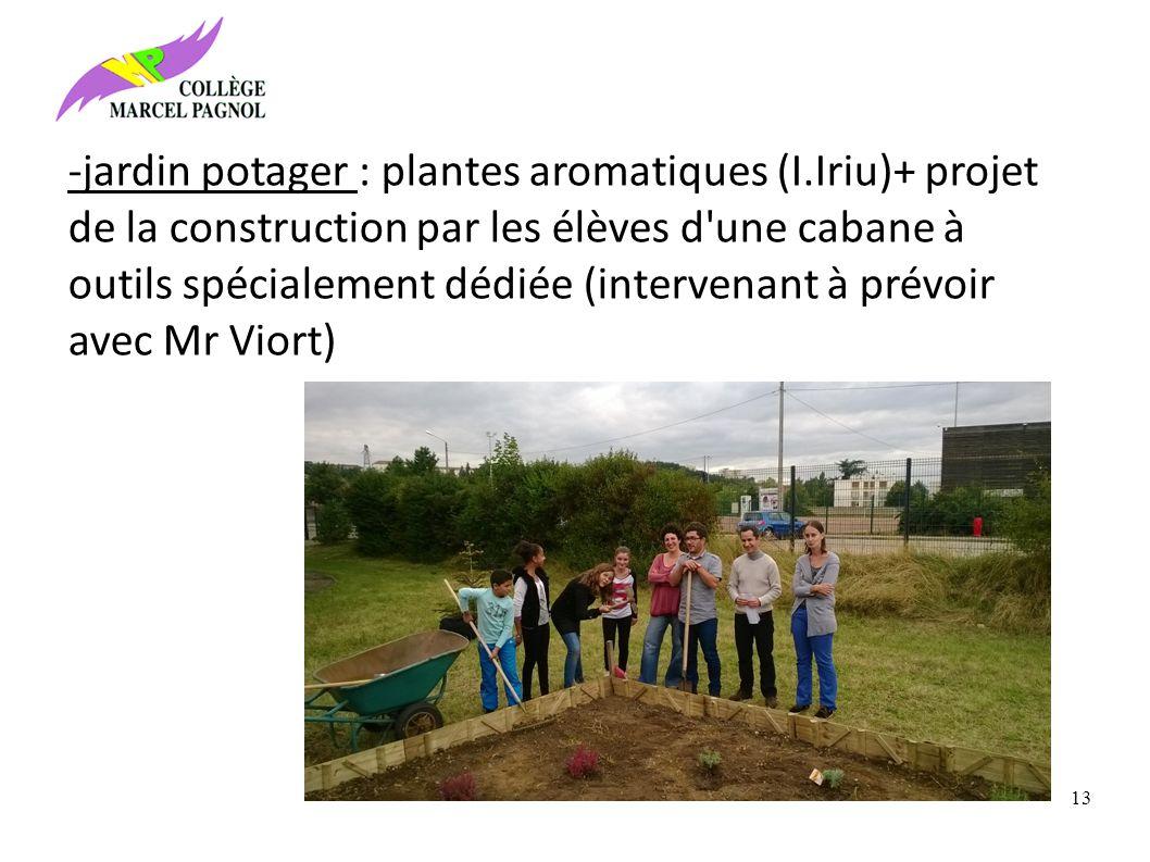 -jardin potager : plantes aromatiques (I