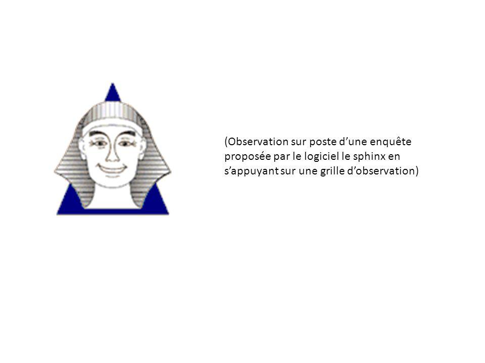 (Observation sur poste d'une enquête proposée par le logiciel le sphinx en s'appuyant sur une grille d'observation)