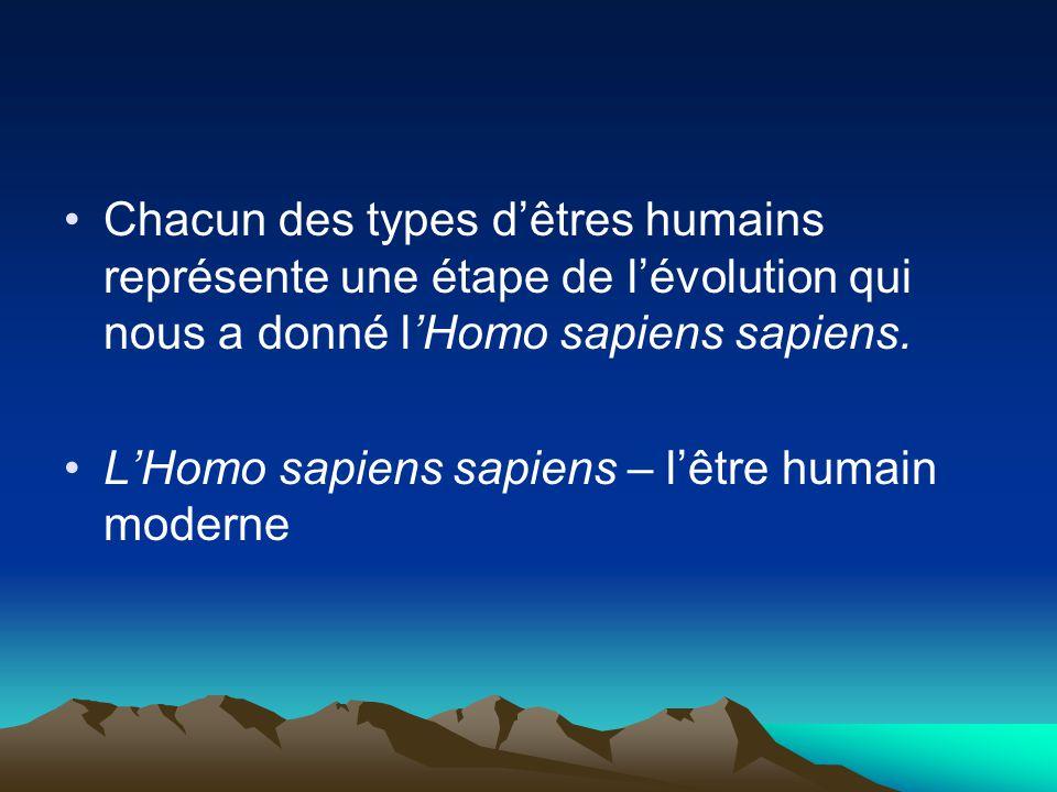 Chacun des types d'êtres humains représente une étape de l'évolution qui nous a donné l'Homo sapiens sapiens.