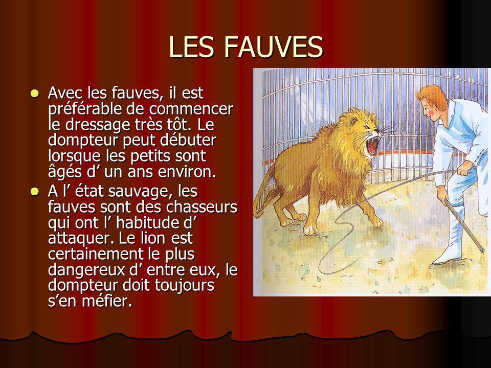 LES FAUVES