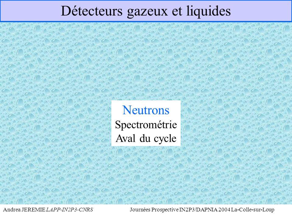 Détecteurs gazeux et liquides