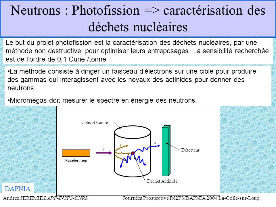 Neutrons : Photofission => caractérisation des déchets nucléaires