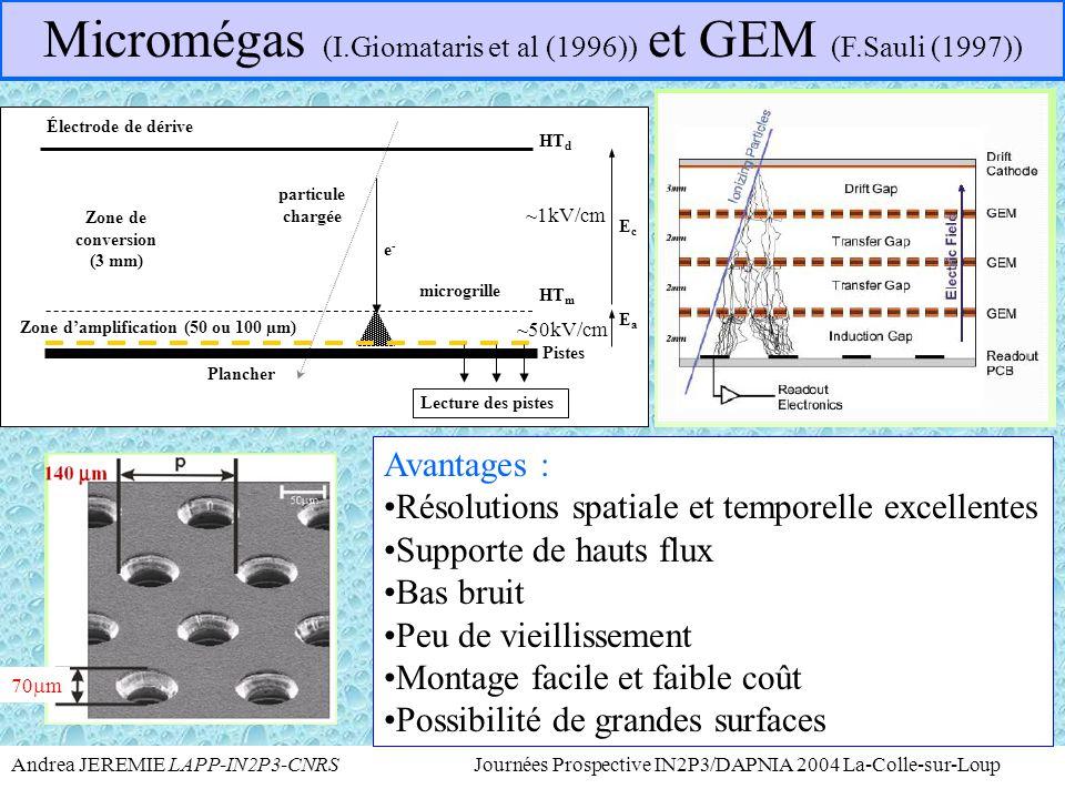 Micromégas (I.Giomataris et al (1996)) et GEM (F.Sauli (1997))