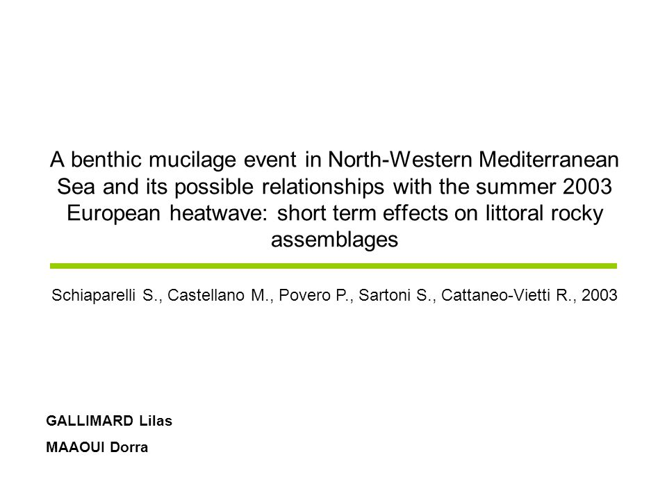 A benthic mucilage event in North-Western Mediterranean Sea and its possible relationships with the summer 2003 European heatwave: short term effects on littoral rocky assemblages