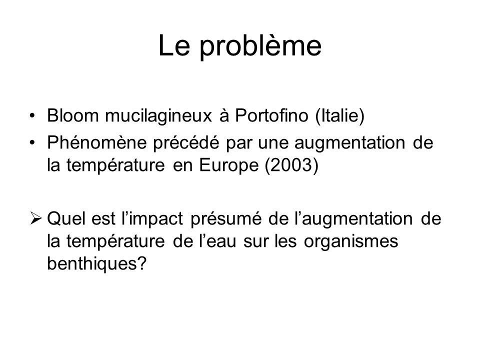 Le problème Bloom mucilagineux à Portofino (Italie)