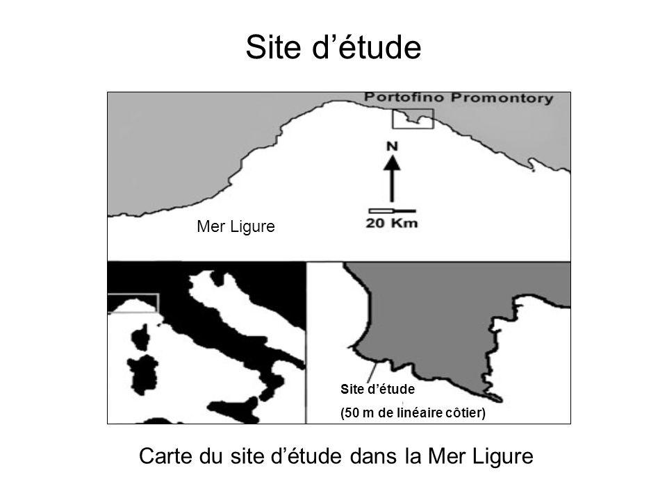 Carte du site d'étude dans la Mer Ligure